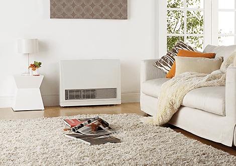 Rinnai Direct Vent Heater