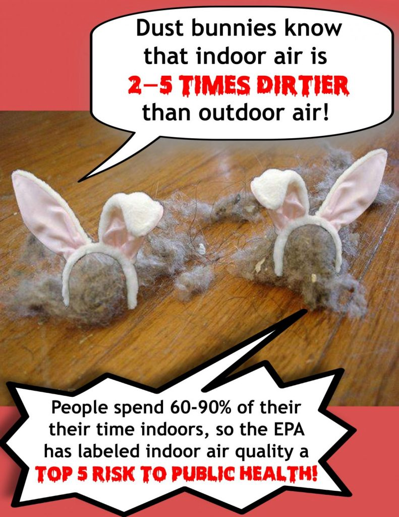 indoor air quality dust bunnies