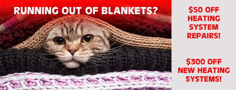 Cat Under Blankets Facebook Cover Grayed